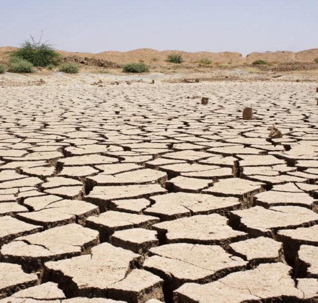 Somalimaan kuivuudesta halkeileva maa