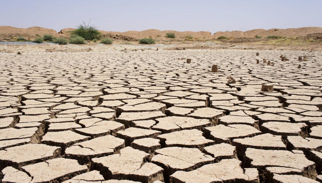 Kuivuuden runtelema maa Somalimaan maaseudulla. Valokuva: Samuli Tarvainen
