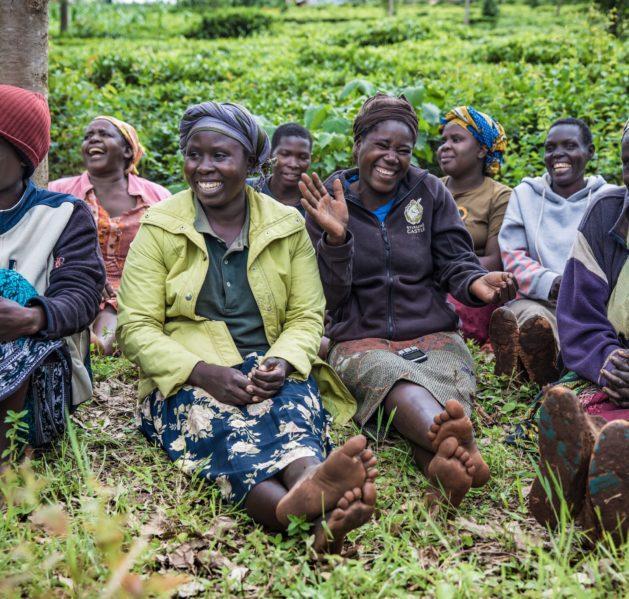 Joukko ihmisiä istuu nurmikolla hymyillen ja nauraen