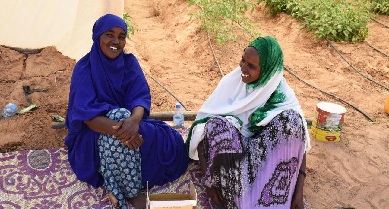 Osuuskunnan naiset kasvihuoneensa edustalla juomatauolla. Kuva: Siru Aura
