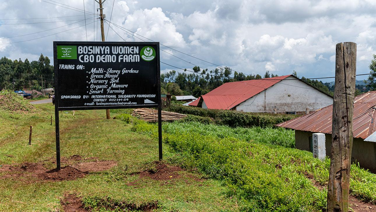 Bosinyan naisryhmän farmi